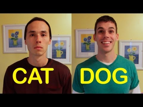 2 Grown Men Mimic What Humans Would Act Like if One was A Dog and The Other A Cat – They Nailed It
