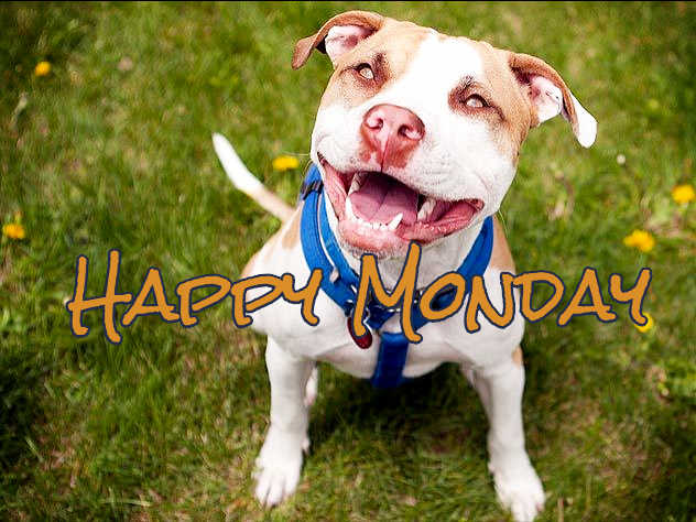 "I Just Wanted To Say ""HAPPY MONDAY"" to all my Friends"