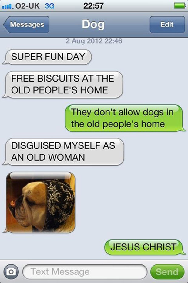 texts-from-dogs-24