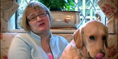 AMAZING STORY… Guide Dogs Lead Owners to Love