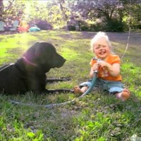 """They Asked Their Little Girl To """"Spray The Dog"""" What Happened Next Cracked My Ribs!"""