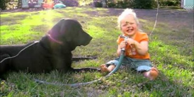 "They Asked Their Little Girl To ""Spray The Dog"" What Happened Next Cracked My Ribs!"