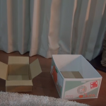 Cat Gets To Choose Between Two Boxes…Then It Becomes Hilarious!
