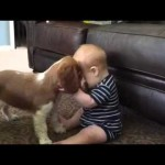 Baby And Puppy Are Sharing A Secret, But When They Look Up? OMG!