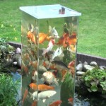 Man Flips A Glass Aquarium Upside-Down, Now Keep Your Eye On The Fish… Unbelievable!