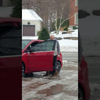 She never walked on a driveway like this before…but you have to hear her friends watching her
